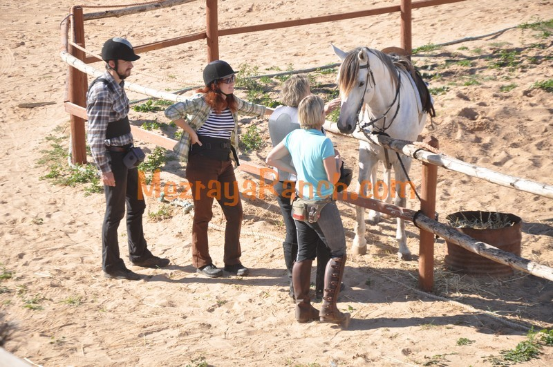 mezraya-ranch-equitation-djerba