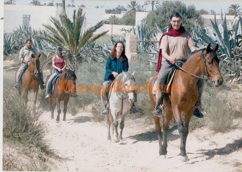 reiten-equitation-riding-djerba