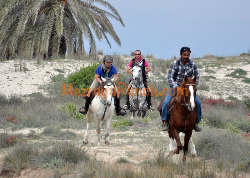 Mezraya-Ranch-Djerba0016