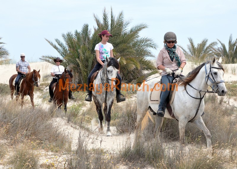 Mezraya-Ranch-Djerba0021